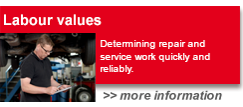 Labour values